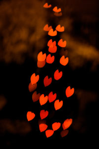 different shaped bokeh